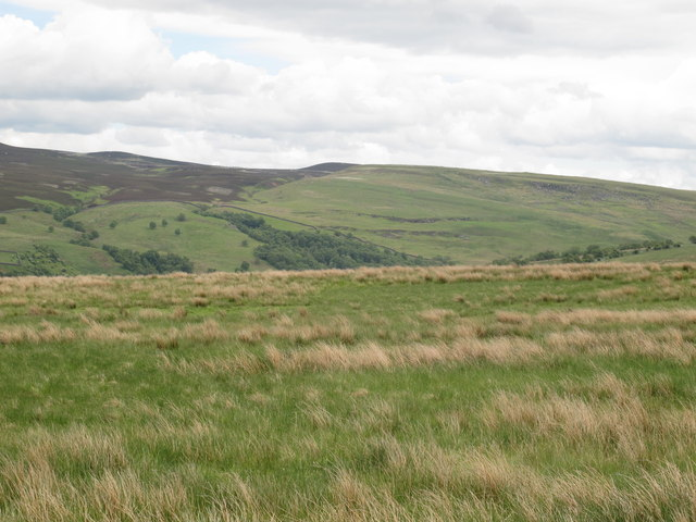 Moorland above Loaning Burn