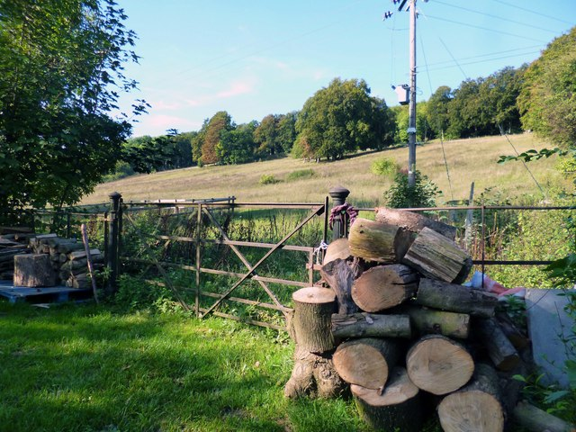 Logs by the Gate