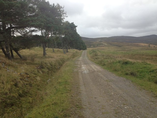 Gravel track near Gledfield