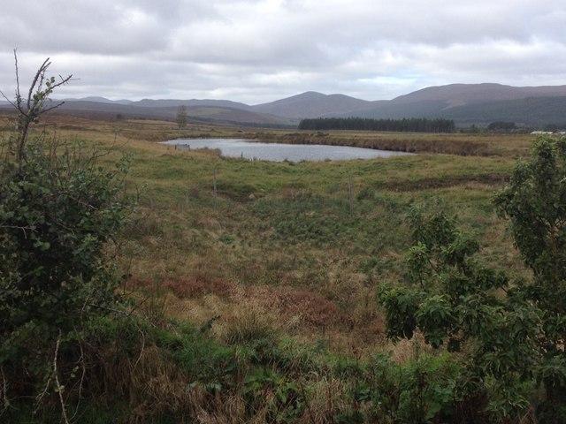 Fishing pond near Gledfield