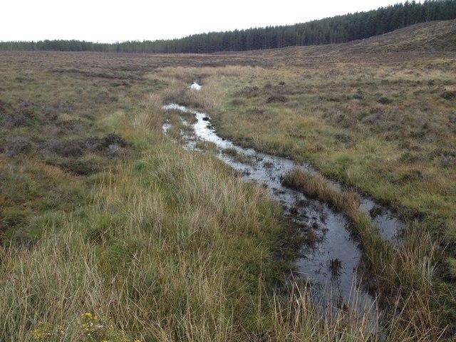 Small stream on Gledfield Estate