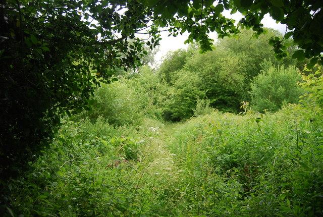Footpath to Henhurst Farm