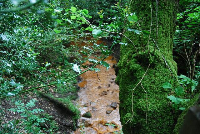 Iron rich stream, Parkhill Wood