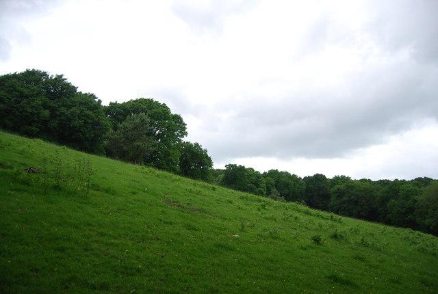Steep grassy slope