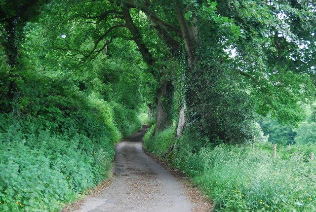 Farm track, Henhurst Farm