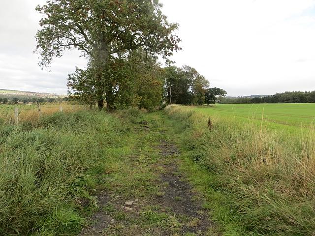 Track near Carrington