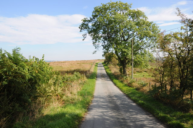 Country road near Dyfnant Forest