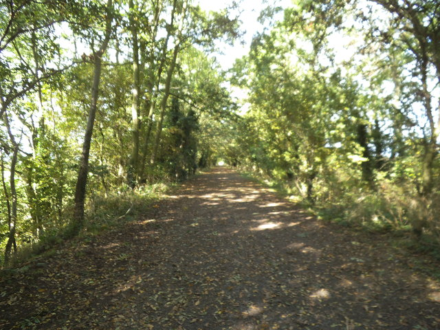 Railway Track Path