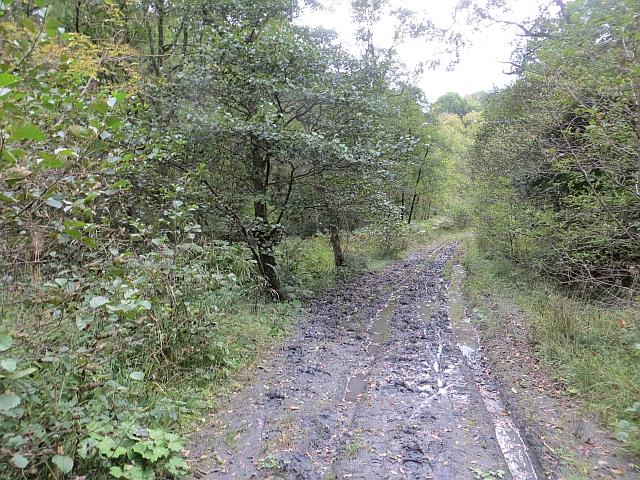 Muddy track, Redside Burn