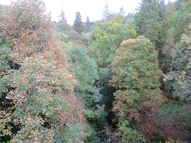 View from Braidwood Bridge