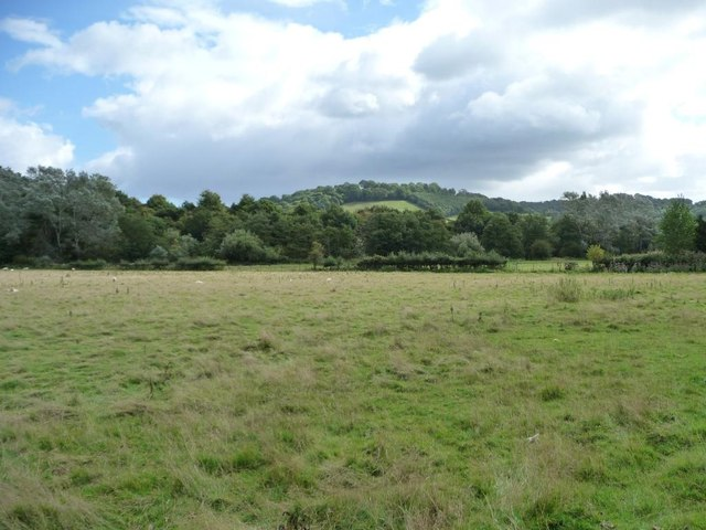 Sheep pasture in the Usk valley