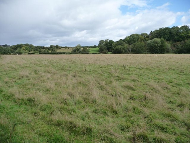 Sheep pasture south-west of Pentwyn