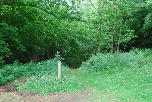 Footpath south of Henhurst Farm