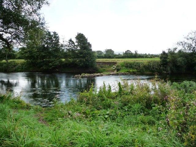 The River Usk, Upper Road Pool