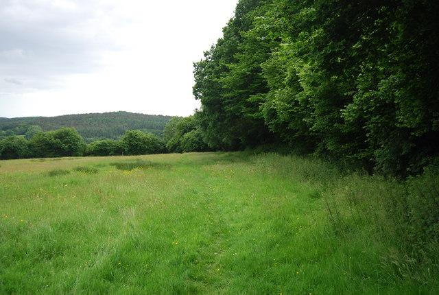 Footpath near West Down Farm