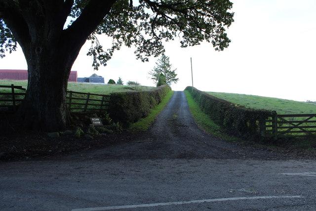Road to Roan Farm, Kirkmichael