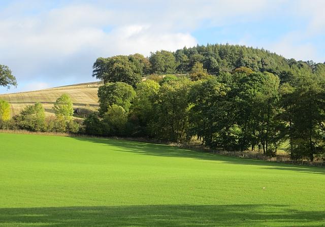 Field beneath Bandirran Hill