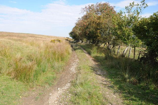 Track to Pwll-yr-hwch