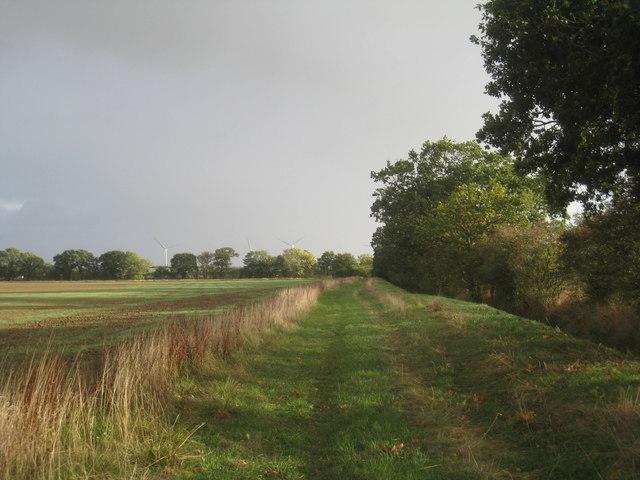 Footpath alongside Westfield Drain