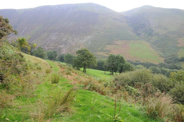 Mountainside above Llanymawddwy
