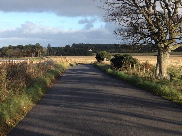 Road near Wester Arboll