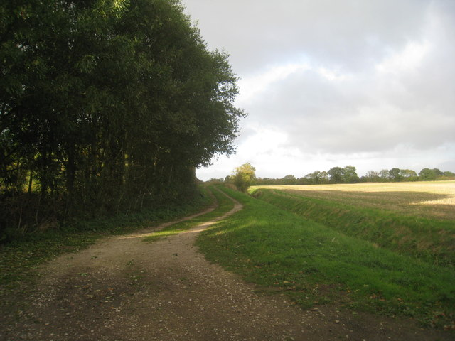 Farm track near Eastrington