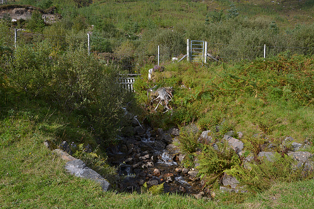 Stream and gate into forestry