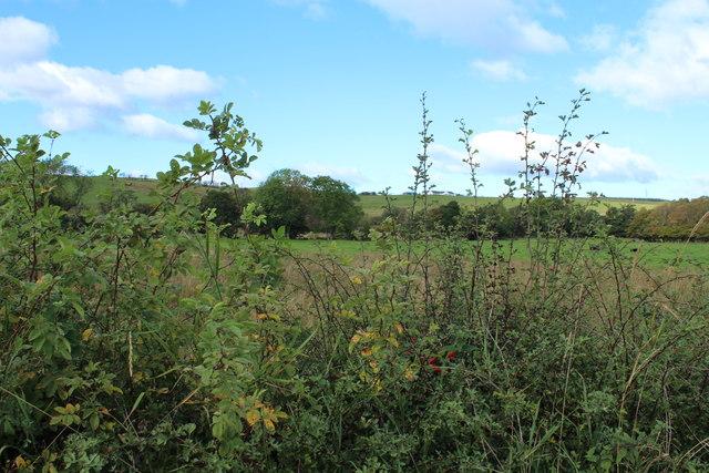 Farmland near Dalvennan