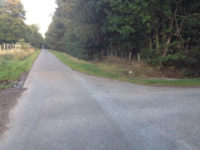Minor road near Newfield