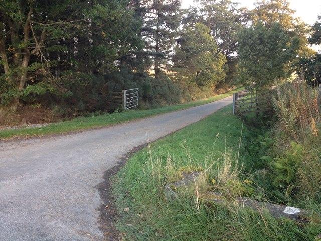Road junction near Newfield