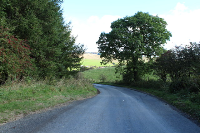Road to Patna near Whitehill
