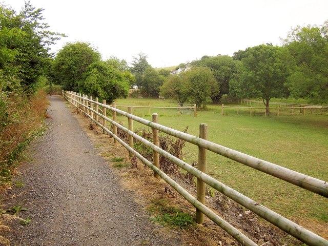 Tarka Trail at Bishop's Tawton