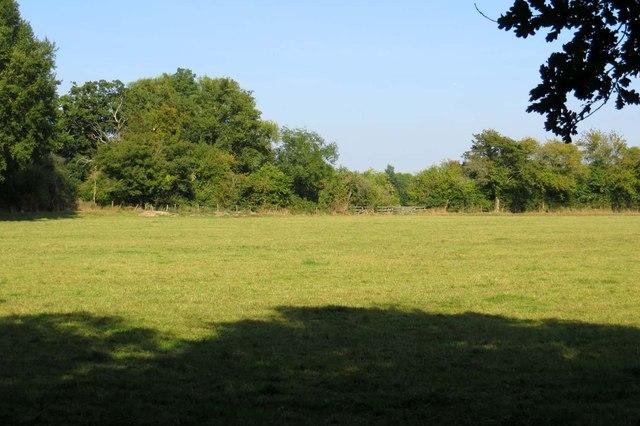 Field by Wendlebury Road