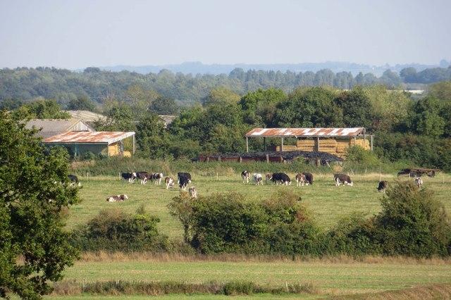 Manor Farm in Wendlebury