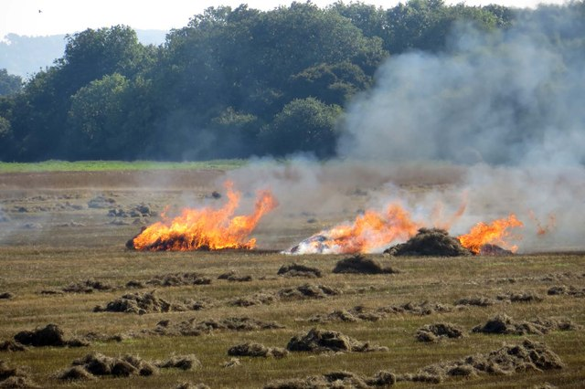 Straw burning in a field by the M40