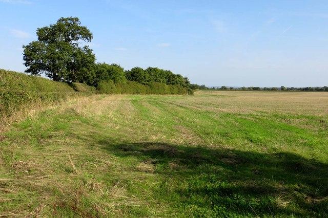 Arable field near Islip
