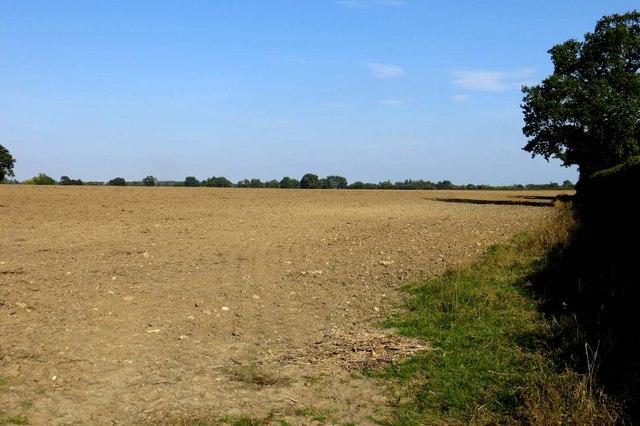 Harrowed field near Islip