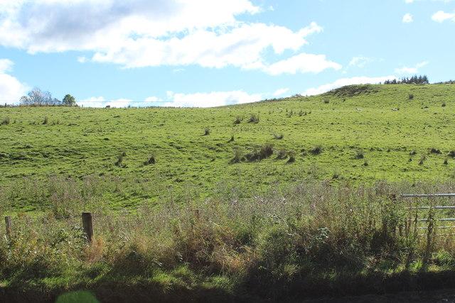 Farmland near Patna