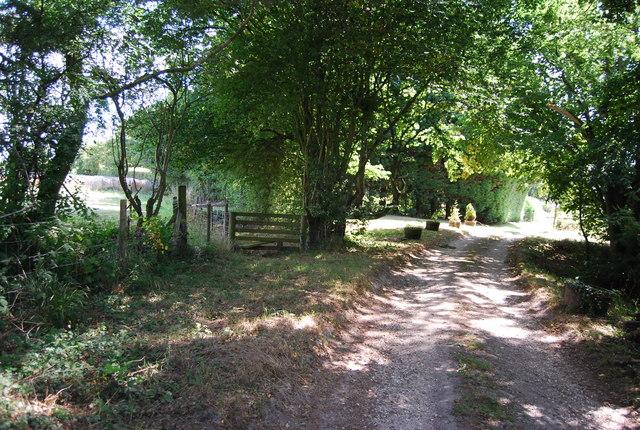 Miles Farm track