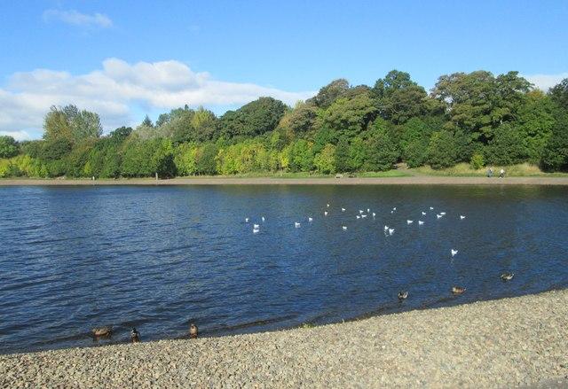 A scene at Strathclyde Park in Lanarkshire