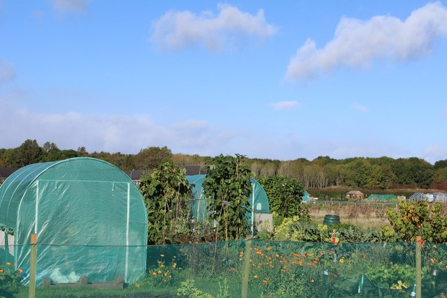 Kilwinning Community Allotments