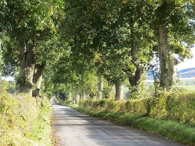 Kinrossie to Saucher road