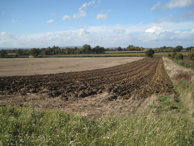 Autumn ploughing has begun near Chelmscote