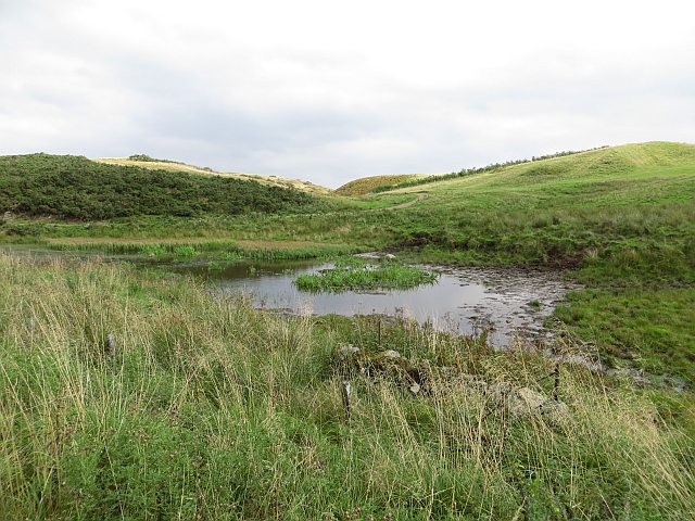 Pool, Glenfarg Fishery