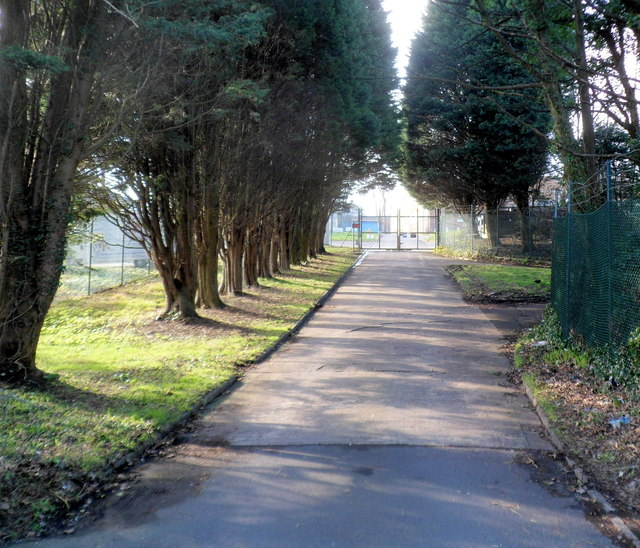 Tree-lined entrance drive to Territorial Army  Centre, West Cross, Swansea