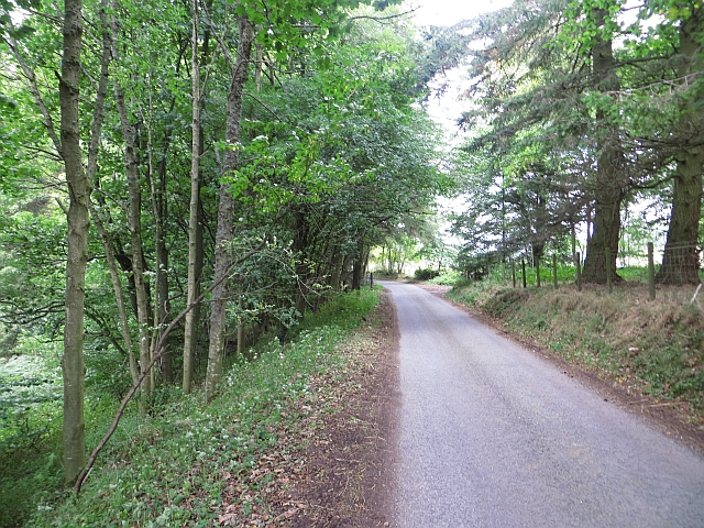 Road beside the Slateford Burn