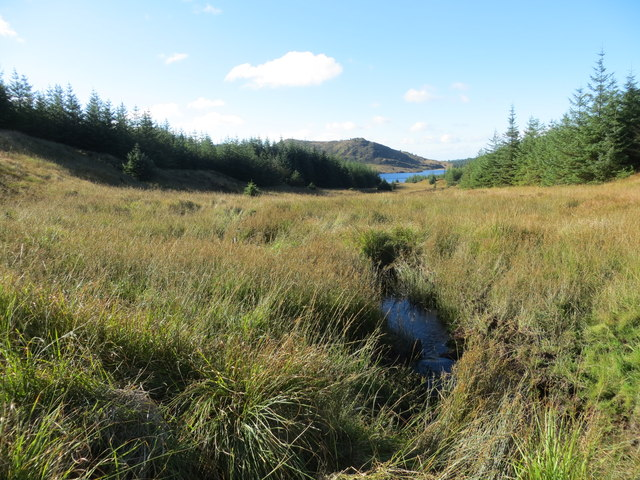 Unnamed burn course in the forest flowing down to Loch a' Chaorainn