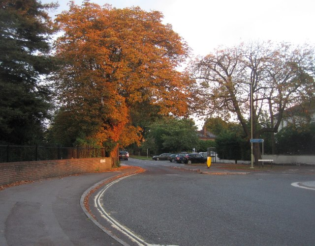 Autumn colour - Boundary Road