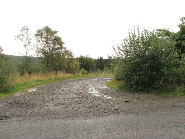 A track into the forest near Poldivan Bridge