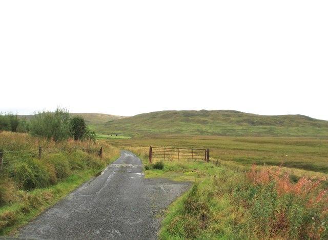 A cattle grid near Locherben